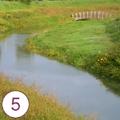 Parco del canale Roncaiette - 1° stralcio