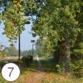 Percorso ciclabile (Limena) - 3° intervento