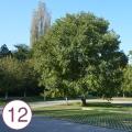 Realizzazione parcheggio - Via Chioggia (Padova)